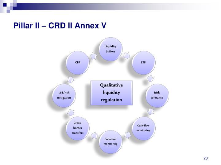 Pillar II – CRD II Annex V
