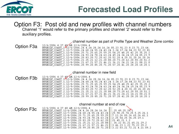 Forecasted Load Profiles