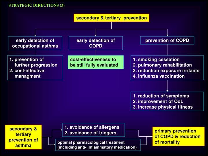 STRATEGIC DIRECTIONS (3)