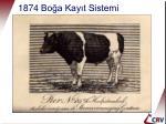 1874 bo a kay t sistemi