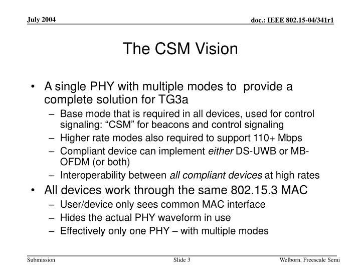 The CSM Vision