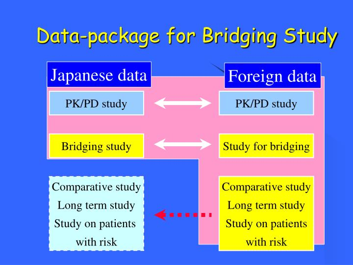 Data-package for Bridging Study