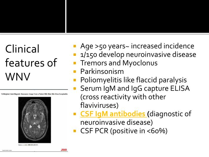 Clinical features of WNV