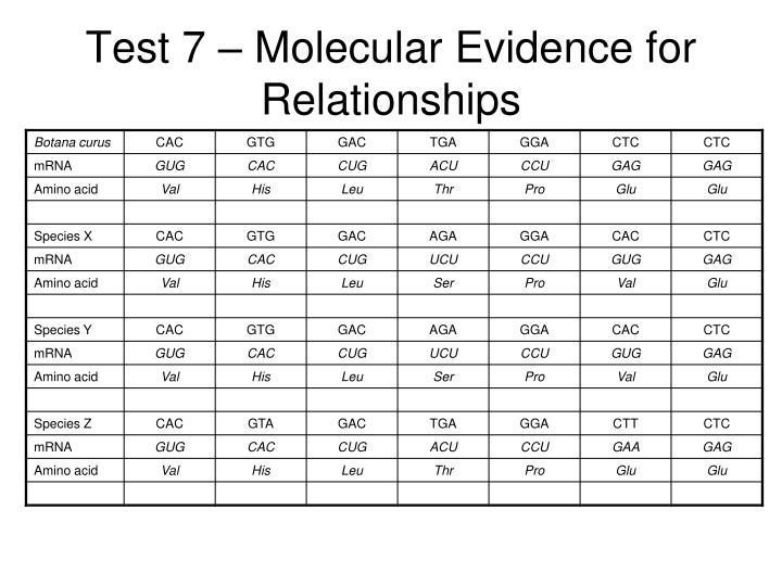 Test 7 – Molecular Evidence for Relationships
