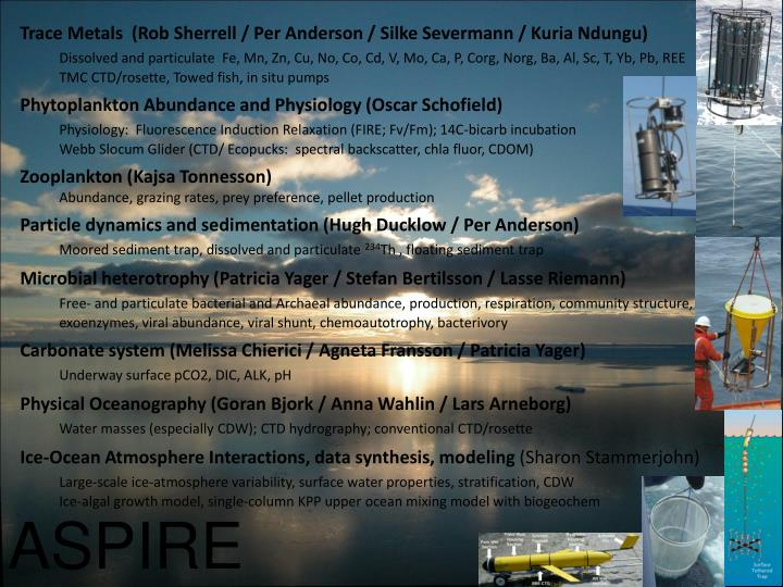 Trace Metals  (Rob Sherrell / Per Anderson / Silke Severmann / Kuria Ndungu)