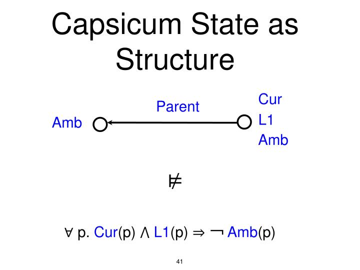 Capsicum State as Structure