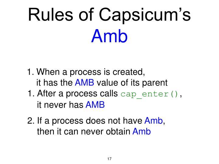 Rules of Capsicum's