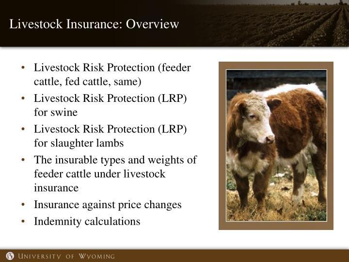 Livestock Insurance: Overview
