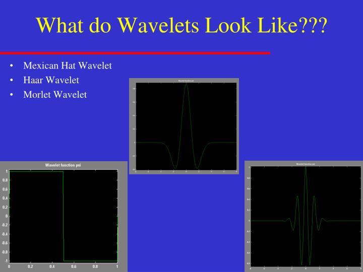 What do Wavelets Look Like???