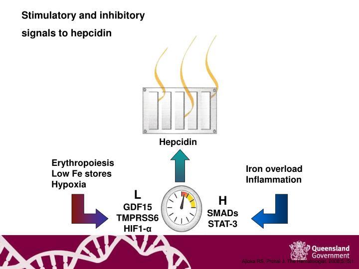 Stimulatory and inhibitory