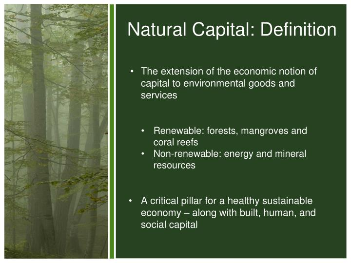 Natural Capital: Definition