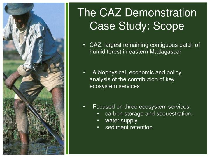 The CAZ Demonstration Case Study: Scope
