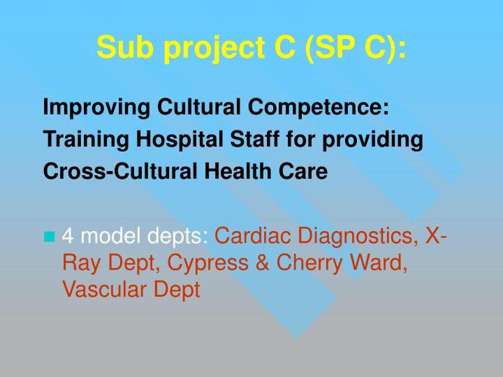 Sub project C (SP C):