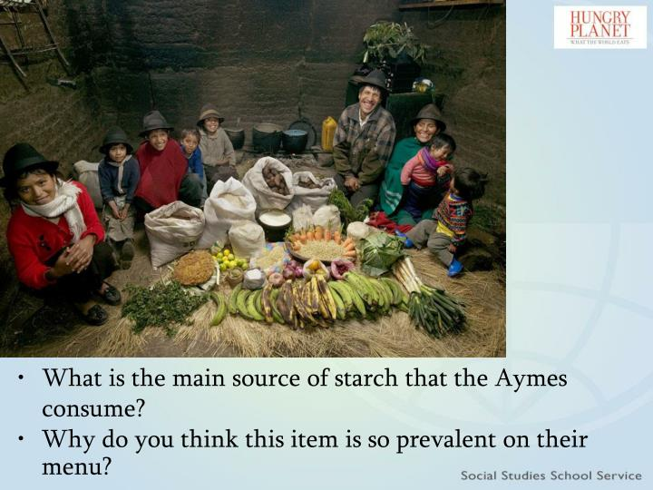 What is the main source of starch that the Aymes consume?
