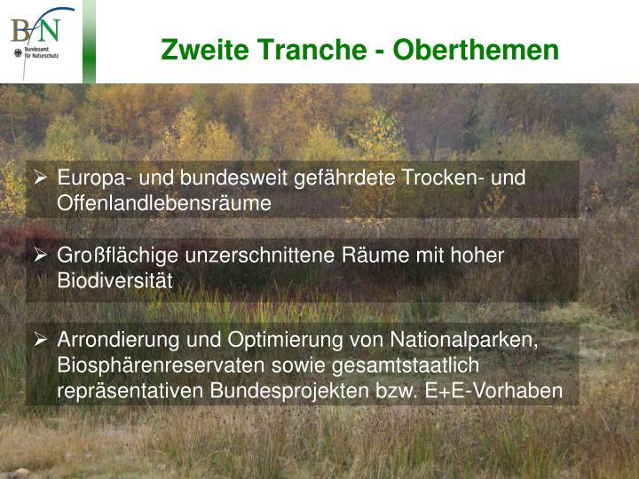 Zweite Tranche - Oberthemen