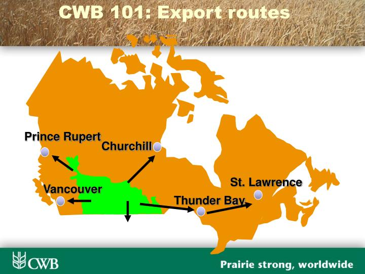 CWB 101: Export routes