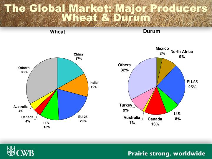 The Global Market: Major Producers Wheat & Durum