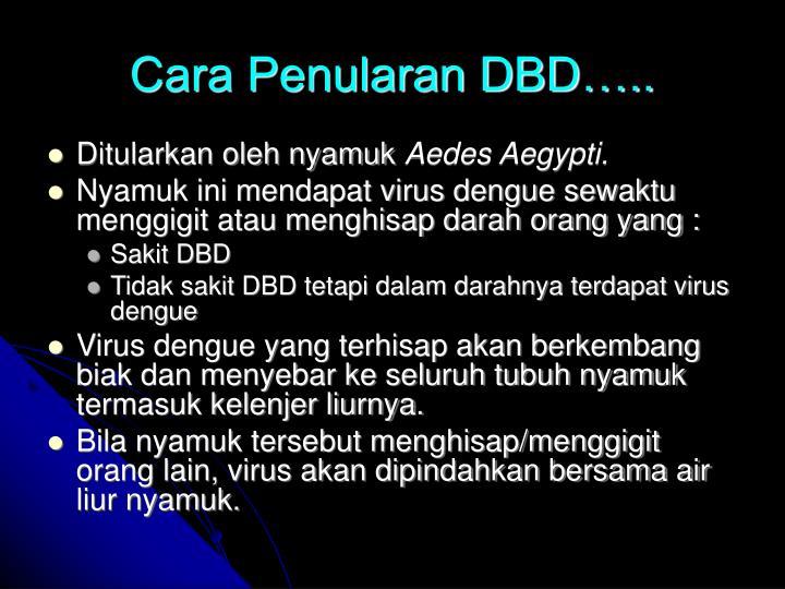 Cara Penularan DBD…..