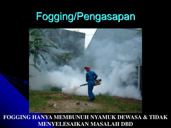 Fogging/Pengasapan
