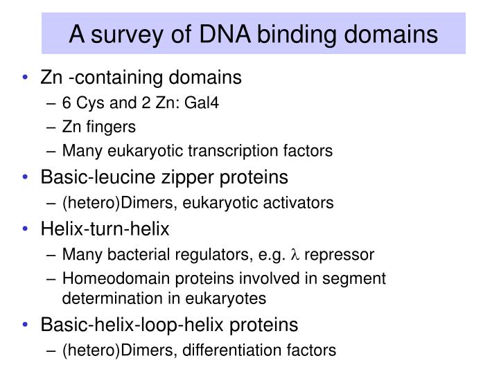A survey of dna binding domains