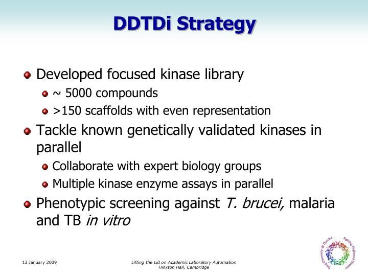 DDTDi Strategy