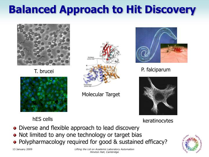 Balanced Approach to Hit Discovery