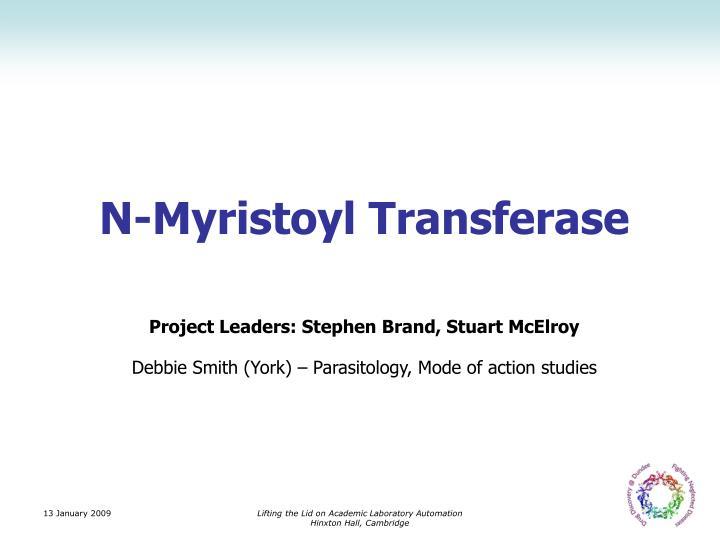 N-Myristoyl Transferase