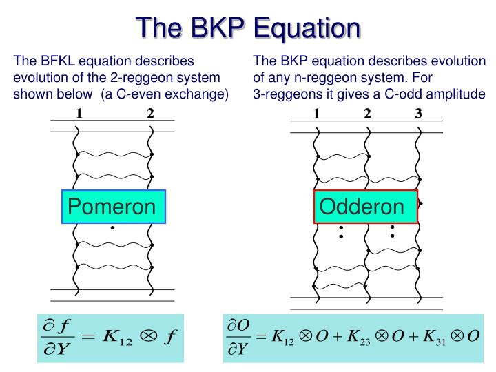 The BKP Equation