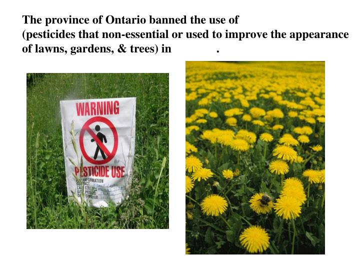 The province of Ontario banned the use of