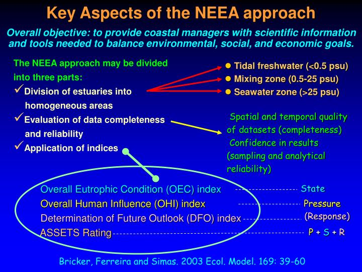 Key Aspects of the NEEA approach