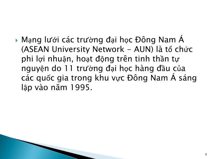Mạng lưới các trường đại học Đông Nam Á (ASEAN University Network - AUN) là tổ chức phi lợi nhuận, hoạt động trên tinh thần tự nguyện do 11 trường đại học hàng đầu của các quốc gia trong khu vực Đông Nam Á sáng lập vào năm 1995.