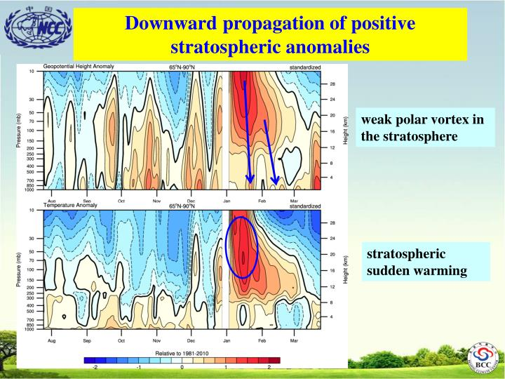 Downward propagation of positive stratospheric anomalies