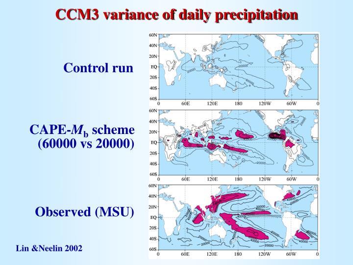 CCM3 variance of daily precipitation