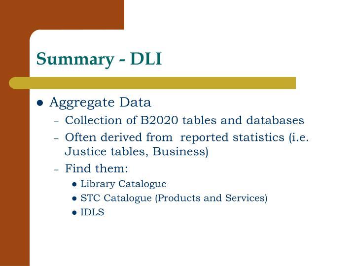Summary - DLI