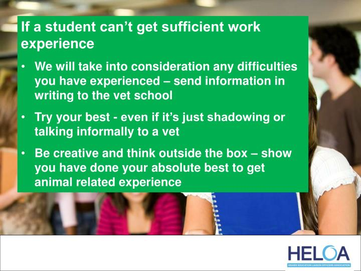 If a student can't get sufficient work experience