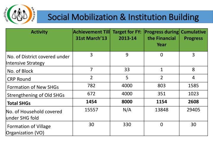 Social Mobilization & Institution Building