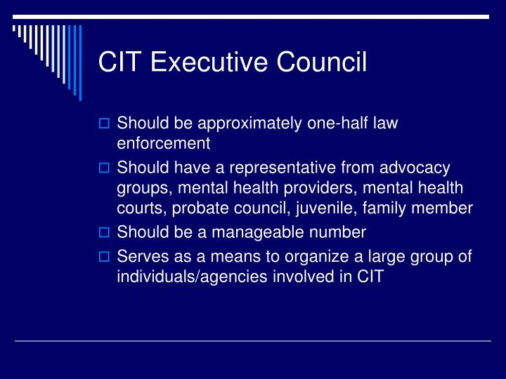 CIT Executive Council