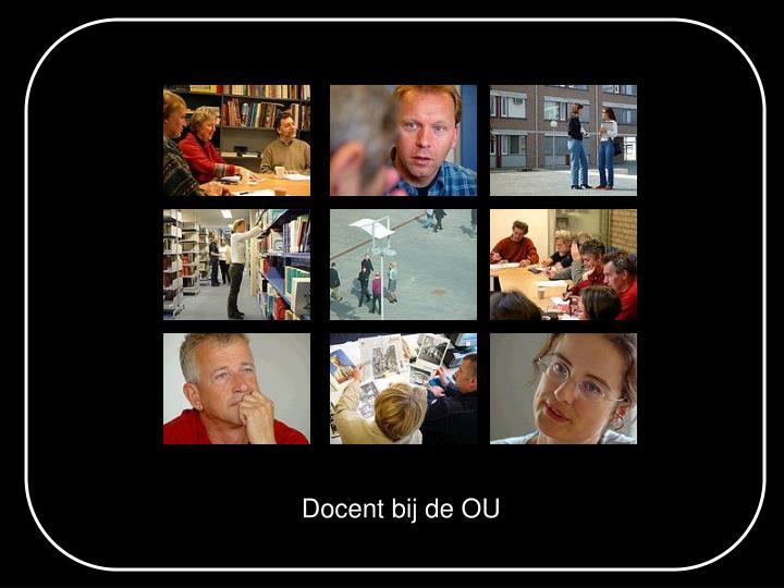 Docent bij de OU