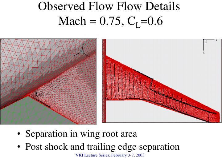 Observed Flow Flow Details