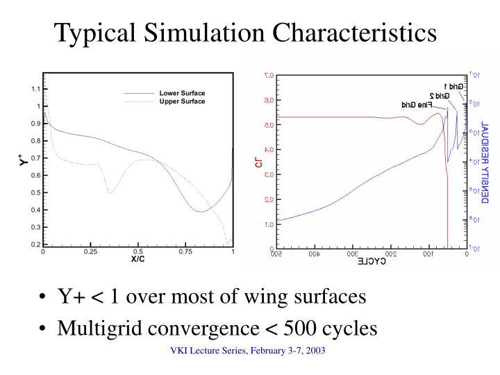 Typical Simulation Characteristics