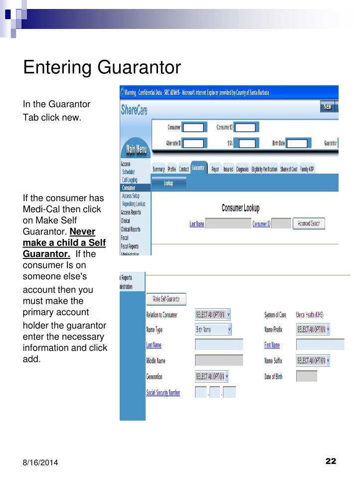 Entering Guarantor