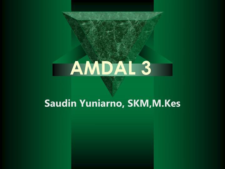 AMDAL 3
