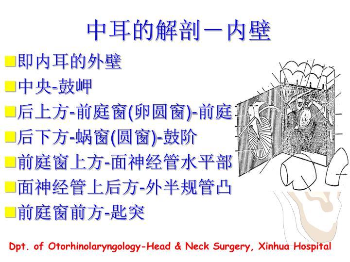 中耳的解剖-内壁