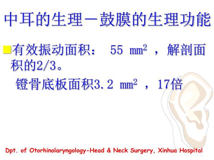 中耳的生理-鼓膜的生理功能