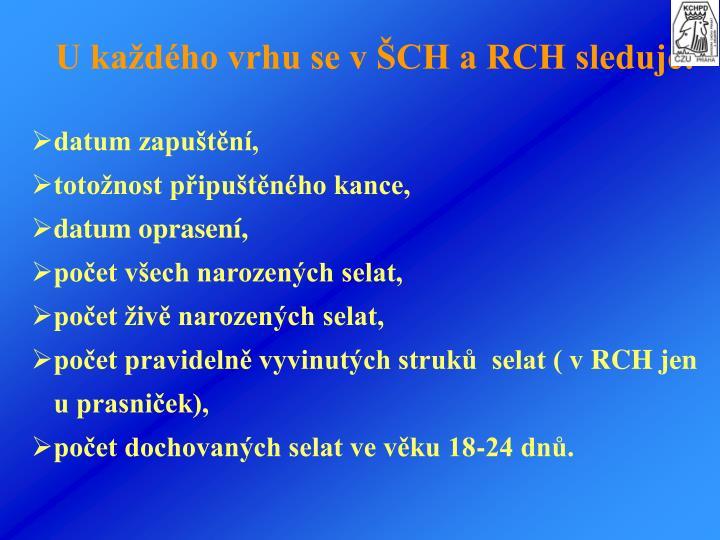 U kadho vrhu se vCH a RCH sleduje: