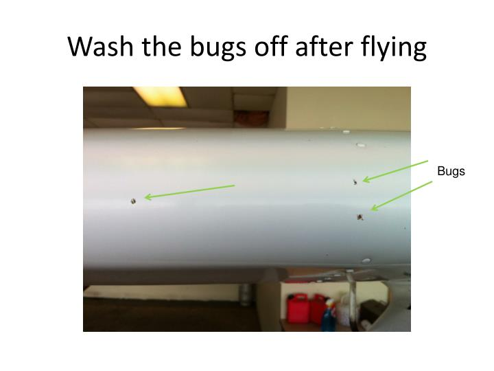 Wash the bugs off after flying