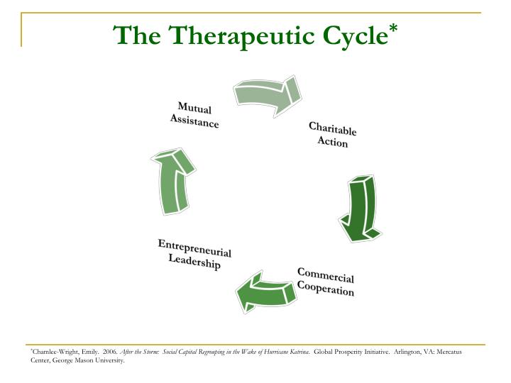 The Therapeutic Cycle