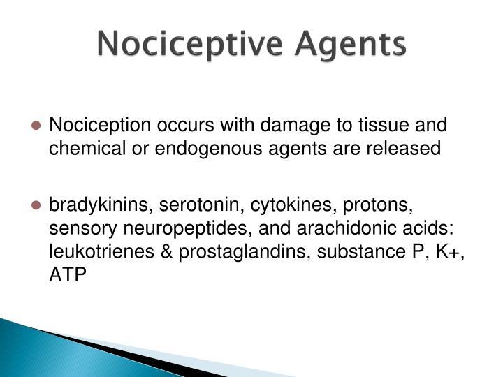 Nociceptive Agents