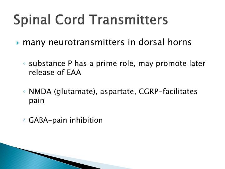 Spinal Cord Transmitters