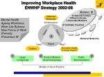 improving workplace health enwhp strategy 2002 08
